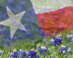 Image result for Texas Pictures